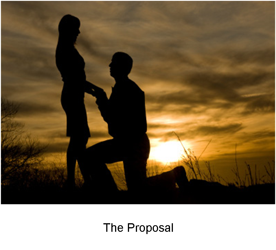 grenepages_Adeyinka Oresanya THE DAUGHTER�S INSPIRATIONS_The Proposal