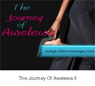 The Journey Of Awelewa 8