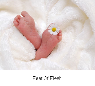 Feet Of Flesh