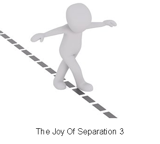 The Joy Of Separation 3