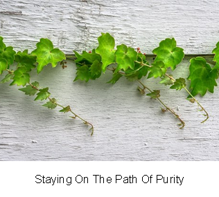 Staying On The Path Of Purity