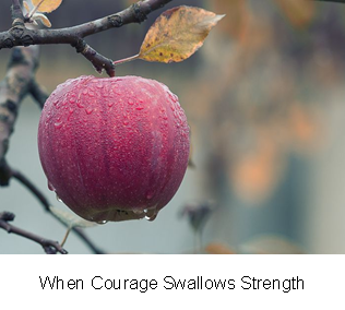 When Courage Swallows Strength