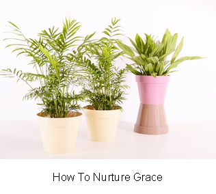 How To Nurture Grace